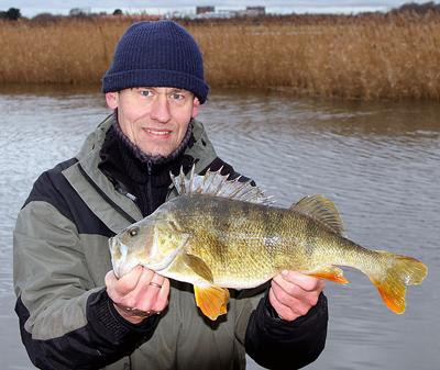 fisk i vandet Vejle